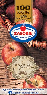 http://zagorin.gr/
