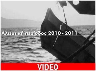 Η Greenpeace στον «τόπο του εγκλήματος»