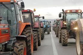 Οι Θεσσαλοί κτηνοτρόφοι ενόψει κινητοποιήσεων