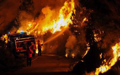 Μιλιέτ: Δύο ομάδες πυρπόλησαν τα ελληνικά δάση