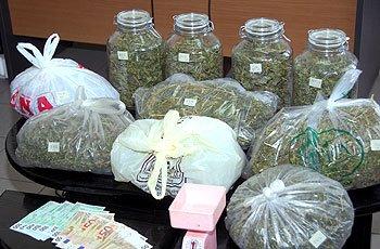 Σύλληψη 55χρονου για κατοχή  241 κιλών κάνναβης !