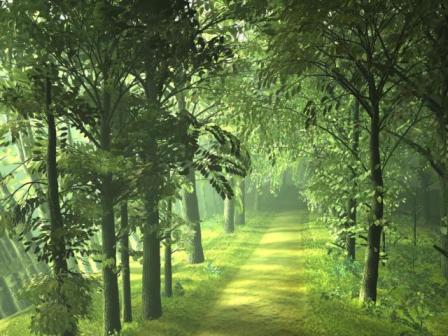 Βοτανικός κήπος στη Σκόπελο