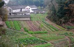 Ξεκίνησε η διάθεση των λαχανόκηπων της Λάρισας σε δικαιούχους