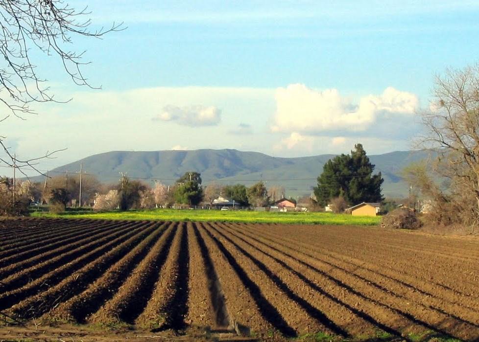 «Θα χρειαστούν 20 δισ. ευρώ για την ανόρθωση της γεωργίας την επόμενη 20ετία»