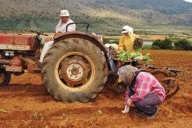 Εναλλακτικός τουρισμός και αγροτικές πολιτικές