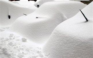 Ζωντανός μετά από δύο μήνες βρέθηκε Σουηδός που είχε θαφτεί στο χιόνι