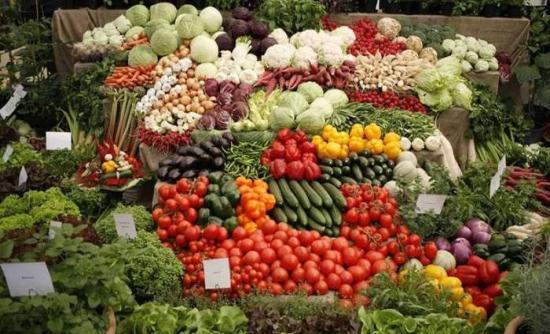Στρατηγική συμφωνία ΗΠΑ – ΕΕ για εμπόριο και εξαγωγές βιολογικών προϊόντων