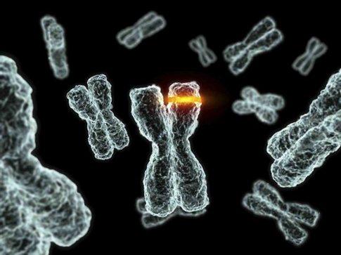Εκτός λειτουργίας λόγω βλάβης το 1% των ανθρώπινων γονιδίων