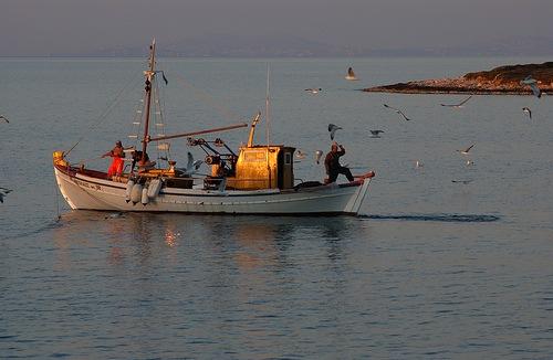 Κατάσχεση αλιευμάτων στη Ρόδο