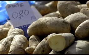 Έκαναν «μπλόκο» στους μεσάζοντες της πατάτας πουλώντας μέσω Internet