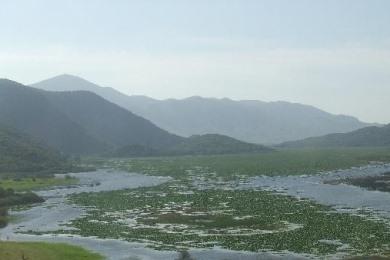 Αχέροντας: κινδυνεύει με εξαφάνιση το προστατευόμενο δέλτα του ποταμού