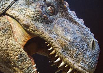 Τεράστιοι ψύλλοι ταλαιπωρούσαν τους δεινόσαυρους