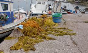 Γενική Συνέλευση Ομοσπονδίας αλιευτικών συλλόγων Θεσσαλίας