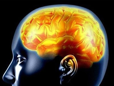Λίπος απαραίτητο για το μυαλό