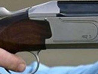 Θήβα: Τον είδε να κλέβει στην αυλή του και τον πυροβόλησε