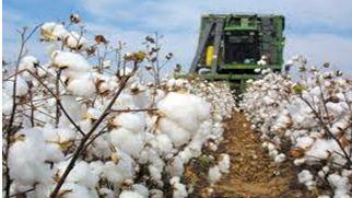 Καρδίτσα: Χιλιάδες αγρότες σε απόγνωση