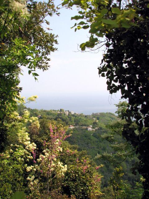 ΑΓΙΟΣ ΔΗΜΗΤΡΙΟΣ: Ο λαβύρινθος με τα καλντερίμια