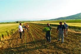 Αγροτική εκδήλωση στον Αλμυρό