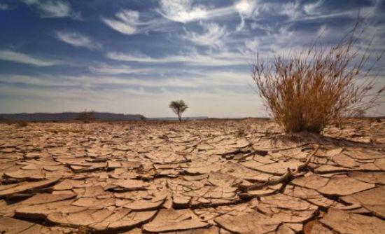 Φόβοι για λιμό λόγω ξηρασίας