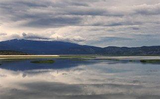 Τοξικοί μικροοργανισμοί στη λίμνη Κάρλα