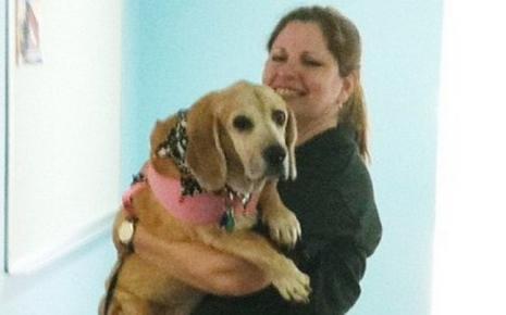 Σκύλος έσωσε την ιδιοκτήτρια του από τον καρκίνο