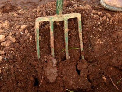 Έθαψε τον πατέρα του στον κήπο και ... συνέχισε τη ζωή του στην Κρήτη!