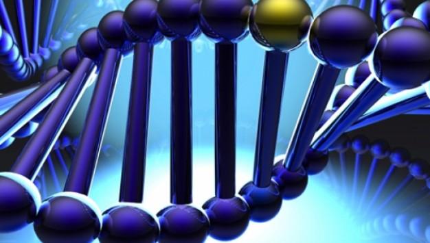 DNA σε ρόλο κομπιούτερ κάνει delete τα καρκινικά κύτταρα