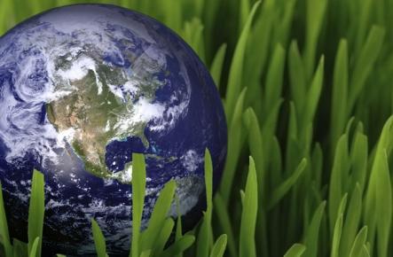 «Βαριά άρρωστη» η γη σύμφωνα με την WWF