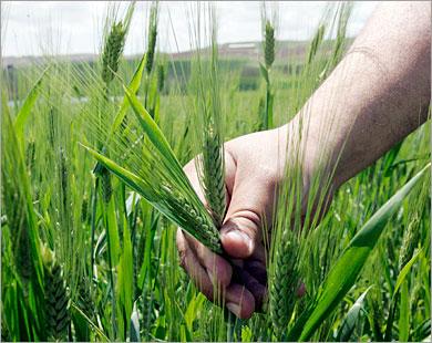 Προτάσεις αγροτουριστικής ανάπτυξης