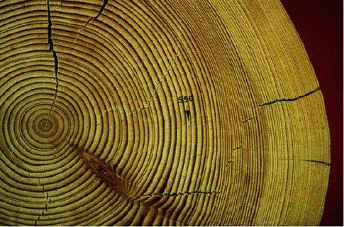Μυστηριώδης ριπή ακτινοβολίας έπληξε τη Γη τον 8ο αιώνα μ.Χ.