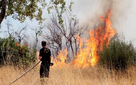 Μπαράζ πυρκαγιών στην Πελοπόννησο