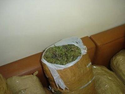 Νεαρή συνελήφθη για κατοχή και διακίνηση 110 κιλών χασίς!