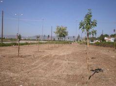 Νέοι χώροι «πρασίνου» στην Δημοτική Κοινότητα Φαλάνης Λάρισας
