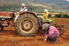 Καρδίτσα: 1045 αγρότες θα πάρουν 4.233.700€
