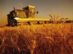 ΕΑΣ Τρικάλων «Υποχρεωτική η καταβολή εισφοράς των αγροτών στον ΕΛΓΑ»