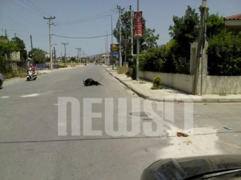 Νεκρός άνδρας της ΔΙΑΣ όταν συγκρούστηκε με αυτοκίνητο που παραβίασε STOP