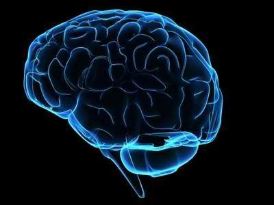 Επιχορήγηση σε Ελληνίδα επιστήμονα για έρευνες στα «άδυτα» του εγκεφάλου