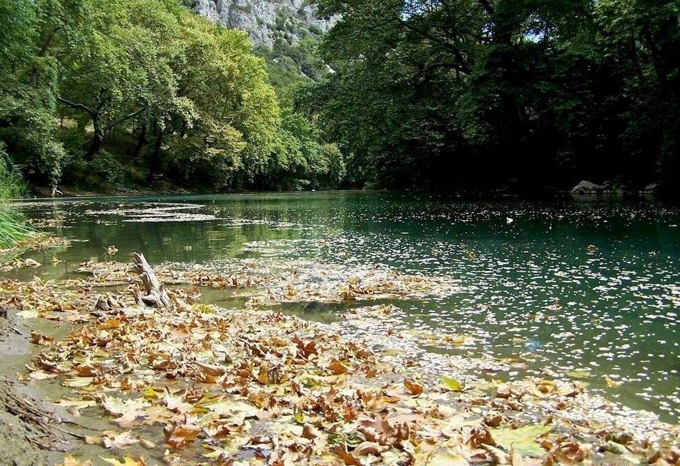 Τρίκαλα: Ξεβράστηκαν νεκρά ψάρια στον Πηνειό