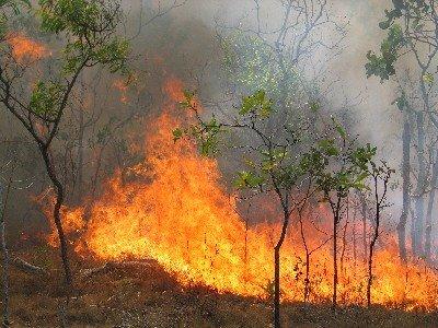 Υψηλός κίνδυνος πυρκαγιάς  σήμερα στις Β. Σποράδες