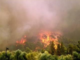 Λάρισα : Κάηκαν 1000 στρέμματα υπολειμμάτων καλλιεργειών