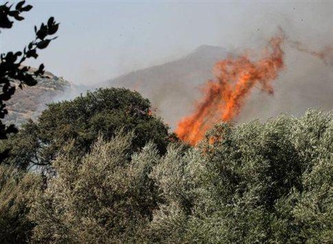 Σε εξέλιξη για δεύτερη ημέρα η μεγάλη πυρκαγιά στη Βιάννο Ηρακλείου