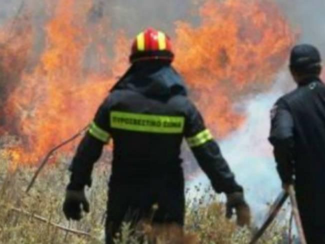 Σε εξέλιξη πυρκαγιά στην Επίδαυρο