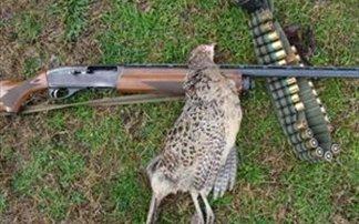 Πήγε για κυνήγι και πυροβόλησε... άνθρωπο!