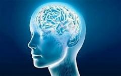 """Βρέθηκε """"σύστημα"""" καθαρισμού του εγκεφάλου"""