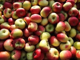 Το μήλο ο κατεξοχήν σύντροφός μας για το Φθινόπωρο