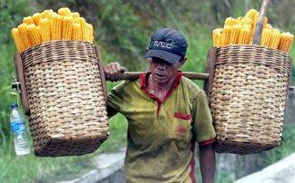 Πάνω από 800 εκατ. άνθρωποι λιμοκτονούν σε όλο τον κόσμο