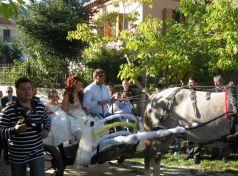 Καβάλα πάνε στην Εκκλησιά στα Τρίκαλα