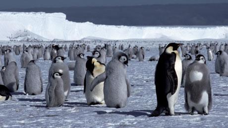 Ο Ελληνικός Κόσμος μεταμορφώνεται σε Παγωμένη Ανταρκτική