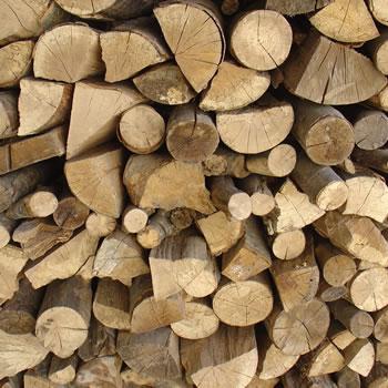 Δωρεάν ξύλα για τους Αλοννησιώτες