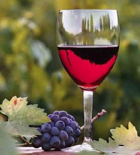 62.000 λίτρα κρασί στον υπόνομο